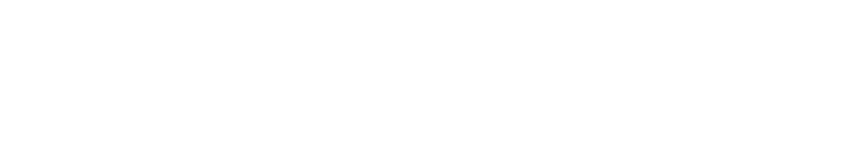 Shawn Mendes Logo